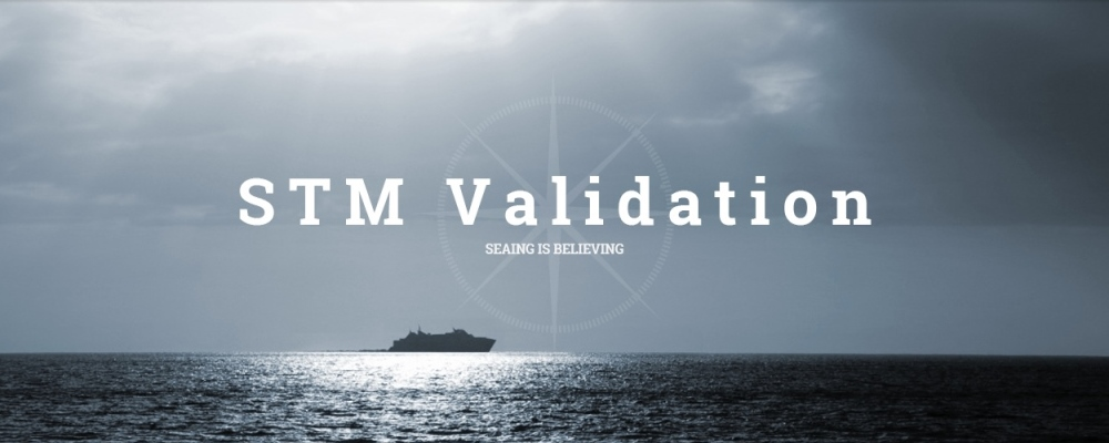 STM Validation Project
