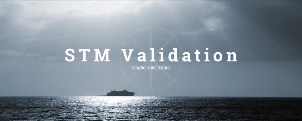 STM Validation Project
